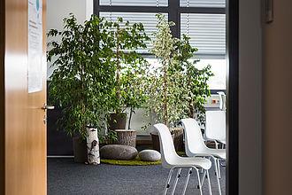 Büro mit Zimmerpflanzen.