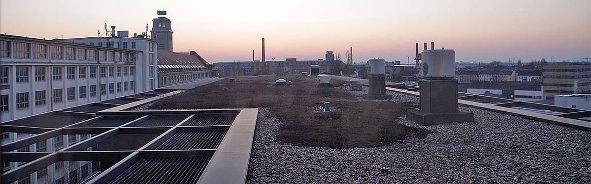 Dachansicht des HTW-Campus Willhelminenhof im Abendrot.