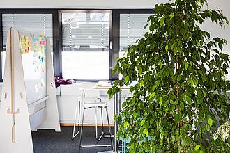 Büro mit großer Zimmerpflanze im Vordergrund, im Hintergrund ein Tisch und eine Flipchart.